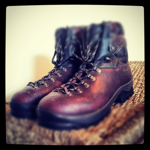 Scarpa Walking Boots