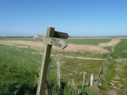 Aldeburgh Marshes May 2011