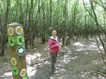 There are no shortage of signposts in Broxbourne Woods NNR Trail Hertfordshire