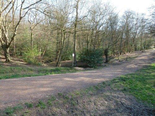 Walks And Walking - Essex Walks Epping Forest Favourite Family Walking Route - Kates Cellar