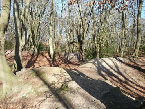 Walks And Walking - Essex Walks Epping Forest Favourite Family Walking Route - Loughton Camp
