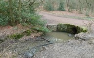 Walks And Walking - Essex Walks Epping Forest Kates CellarWalking Route - Kate's Cellar