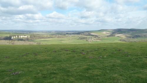 Walks And Walking - West Sussex Walks Arundel to Bognor Regis Walking Route - Arundel Park Views