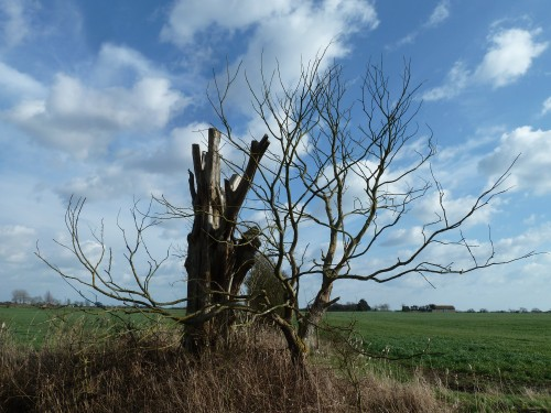 Walks And Walking - West Sussex Walks Arundel to Bognor Regis Walking Route - The Portsmouth And Arundel Navigation