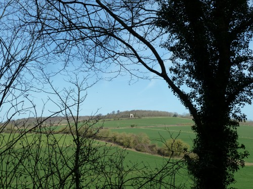 Walks And Walking - West Sussex Walks Slindon Estate National Trust Walking Route - Folly View From West Nore Hill Track