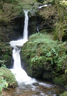 Walks And Walking – Devon Walks - Watersmeet Waterfalls Videos