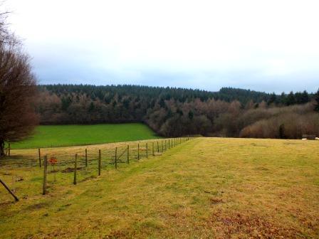 Walks And Walking – Kent Walks Elham Valley Way Walking Route - EVW Covert Wood