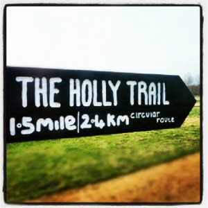 The Holly Trail Epping Forest