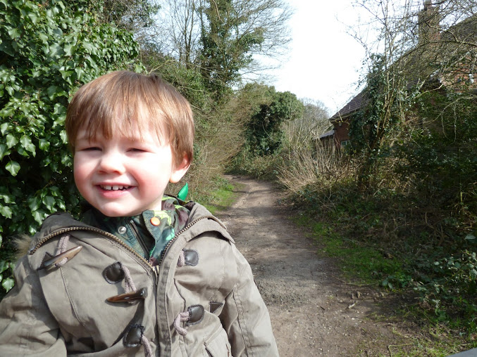 Walks And Walking Epping Forest Walks Knighton Wood And