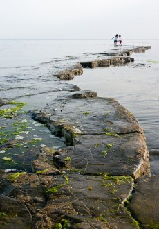 Walks And Walking - Five of the best family walks for summer - Kimmeridge Bay