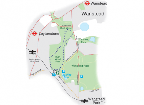 Walks And Walking – Epping Forest The Lime Tree Trail Leytonstone Walk Map