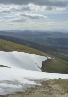 Scotland Walks - A Midsummer Walk Up Carn Ban Mor In The Cairngorms - JWoolf Carn Ban Mor 4