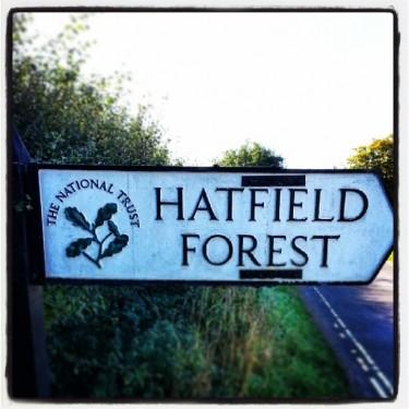 Walks And Walking - Hertfordshire Walks Hatfield Forest Walks - National Trust