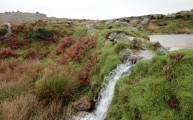 Walks And Walking - The Festival of Winter Walks - Cornwall