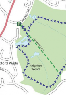 Walks And Walking - Epping Forest Rowan Trail Walking Route
