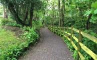 Walks And Walking - The Ramblers Get Walking Week