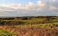 Walks And Walking - Top 3 Walks in Stratton Dorset - Grimstone Down Settlement