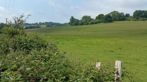 Walks And Walking - Barham Walk In Kent
