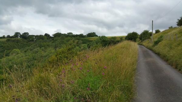 Walks And Walking - Paddlesworth Walk In Kent - Walking The Lanes To Paddlesworth