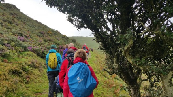 A Week At Holnicote House With HF Holidays - Walk Four - 8 Mile Linear Hard Walk to Lynmouth