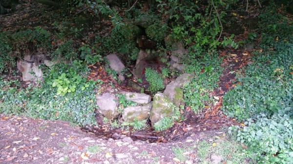HF Holidays 4 Mile Family Circular Walk From Holnicote House - St Agnes Fountain