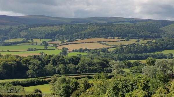 HF Holidays 4 Mile Family Circular Walk From Holnicote House - View From The White Church