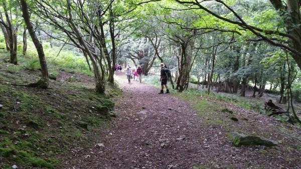HF Holidays 4 Mile Family Circular Walk In Lynmouth - Valley of Rocks - Woodlands Near Lynton