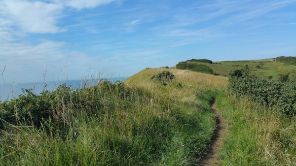 Walks And Walking - Dover Priory To Folkestone West Walk In Kent - North Downs Way Tracks