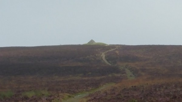 HF Holidays 11 Mile Linear Hard Walk to Dunkery Beacon - Dunkery Beacon - Looking Back