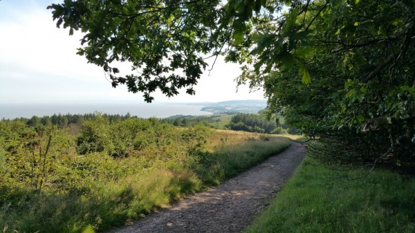 HF Holidays 7 Mile Linear Easy Walk to Dunster - MAC Way