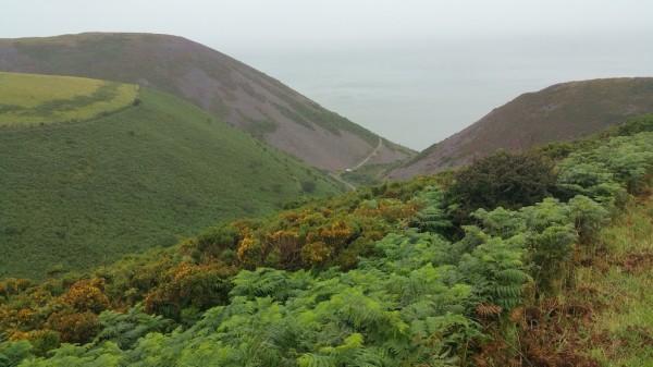 HF Holidays 8 Mile Linear Hard Walk to Lynmouth - South West Coast Path