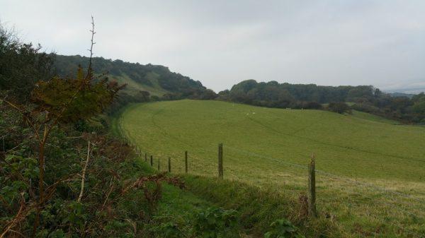 HF Holidays Guided Walk – Godshill Circular Walking Route - Godshill Park Views
