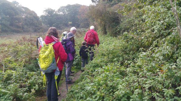 HF Holidays Guided Walk – Godshill Circular Walking Route - Setting Off.